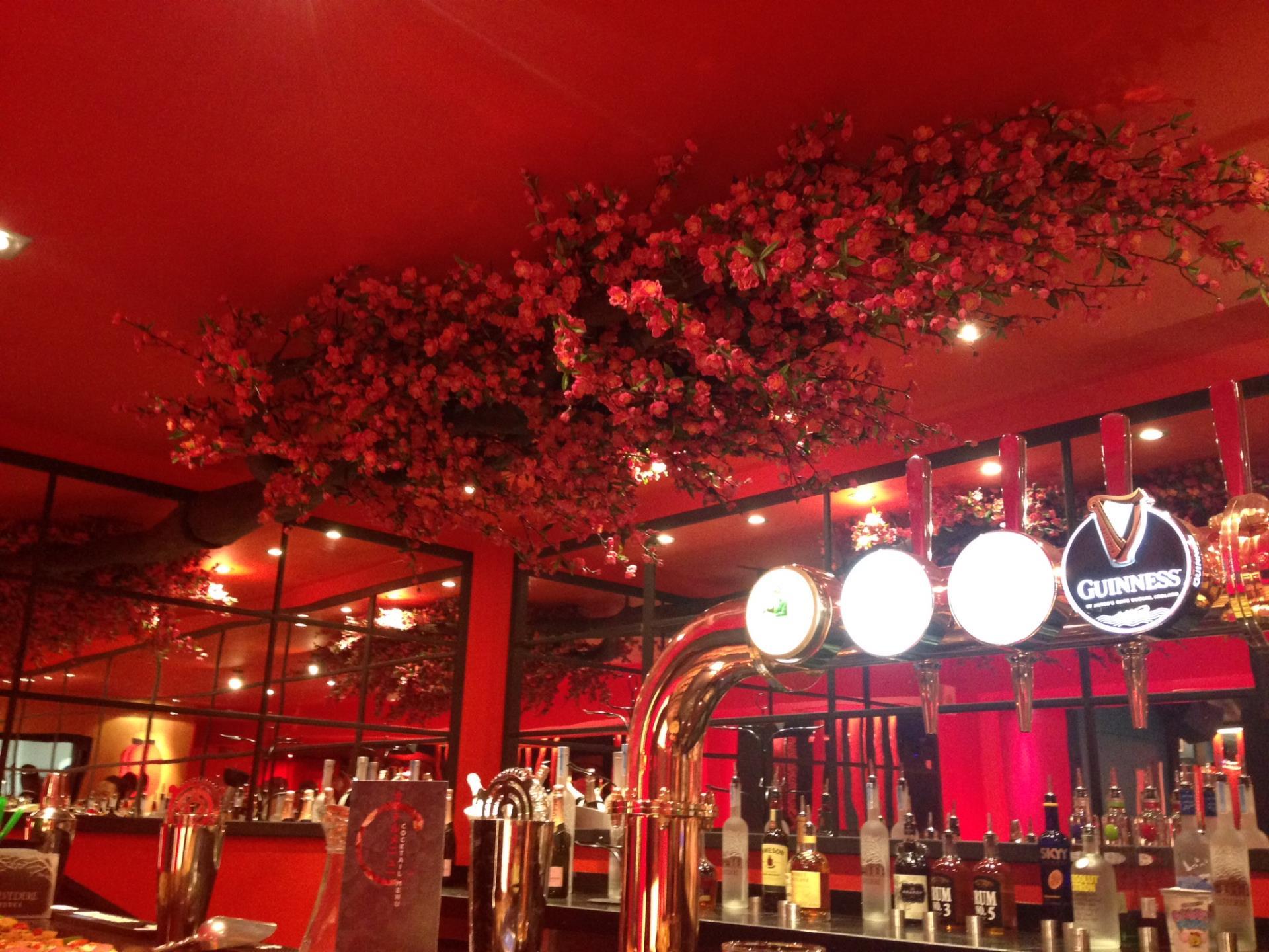 Tokyo Tea Rooms