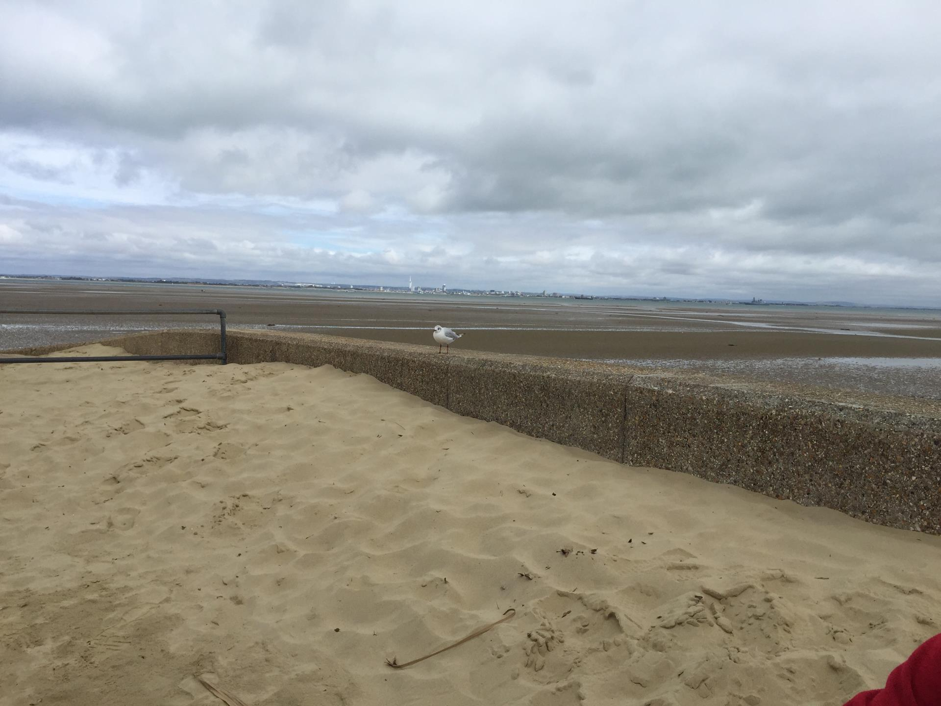 Picture of Ryde Beach - The Beach