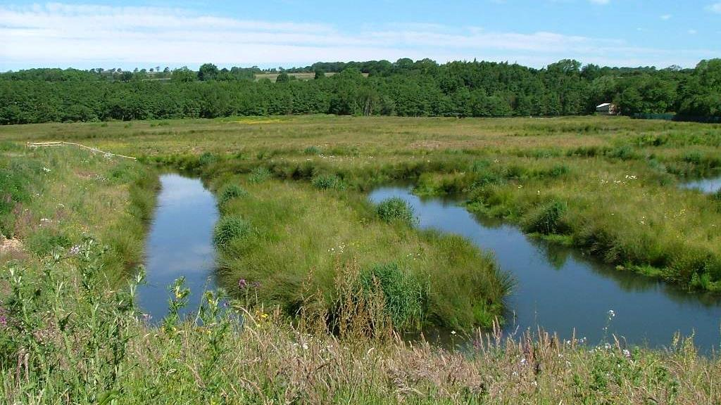 Picture of Low Barns Nature Reserve & Visitor Centre - Low Barns Nature Reserve