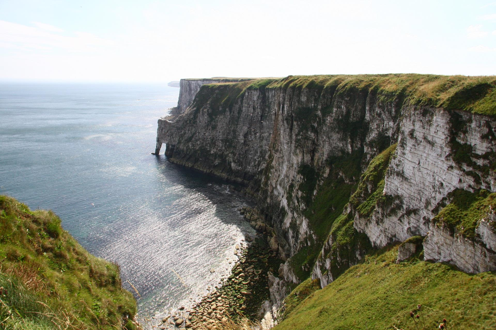 RSPB Bempton Cliffs - Elephant Rock